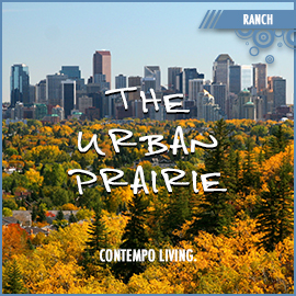 The Urban Prairie