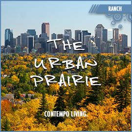 The Urban Prairie